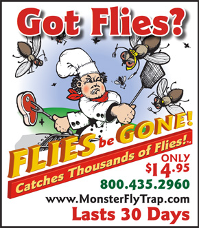 flies be gone ad